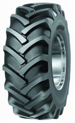 TD-01 R1 Tires